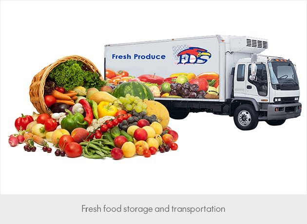 fresh food storage and transportation