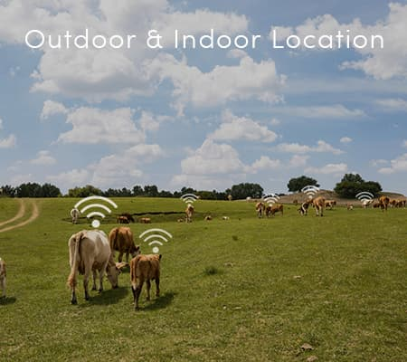 Outdoor & Indoor Location