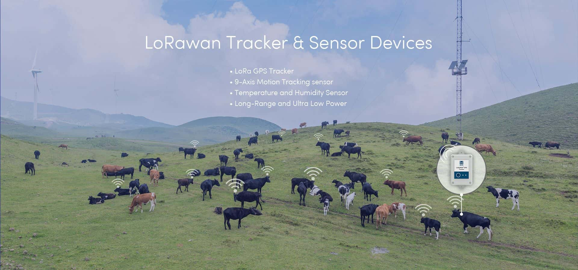 lorawan tracker and sensor devices